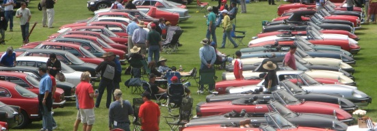 Alfas at Concorso Italiano, Monterey 2011
