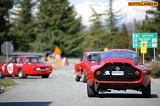 Le Alfa dell'Autodelta inpista